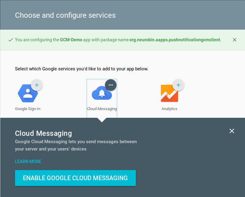 enabling Google Cloud Messaging in GCM configuration file